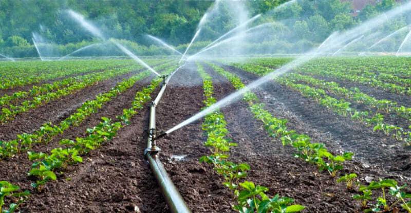 Riego para agricultura