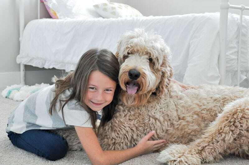 Mudanza con Niños y Mascotas